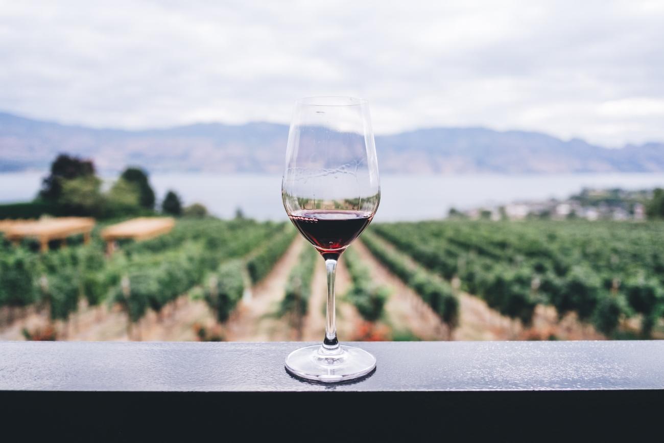 bando promozione vino